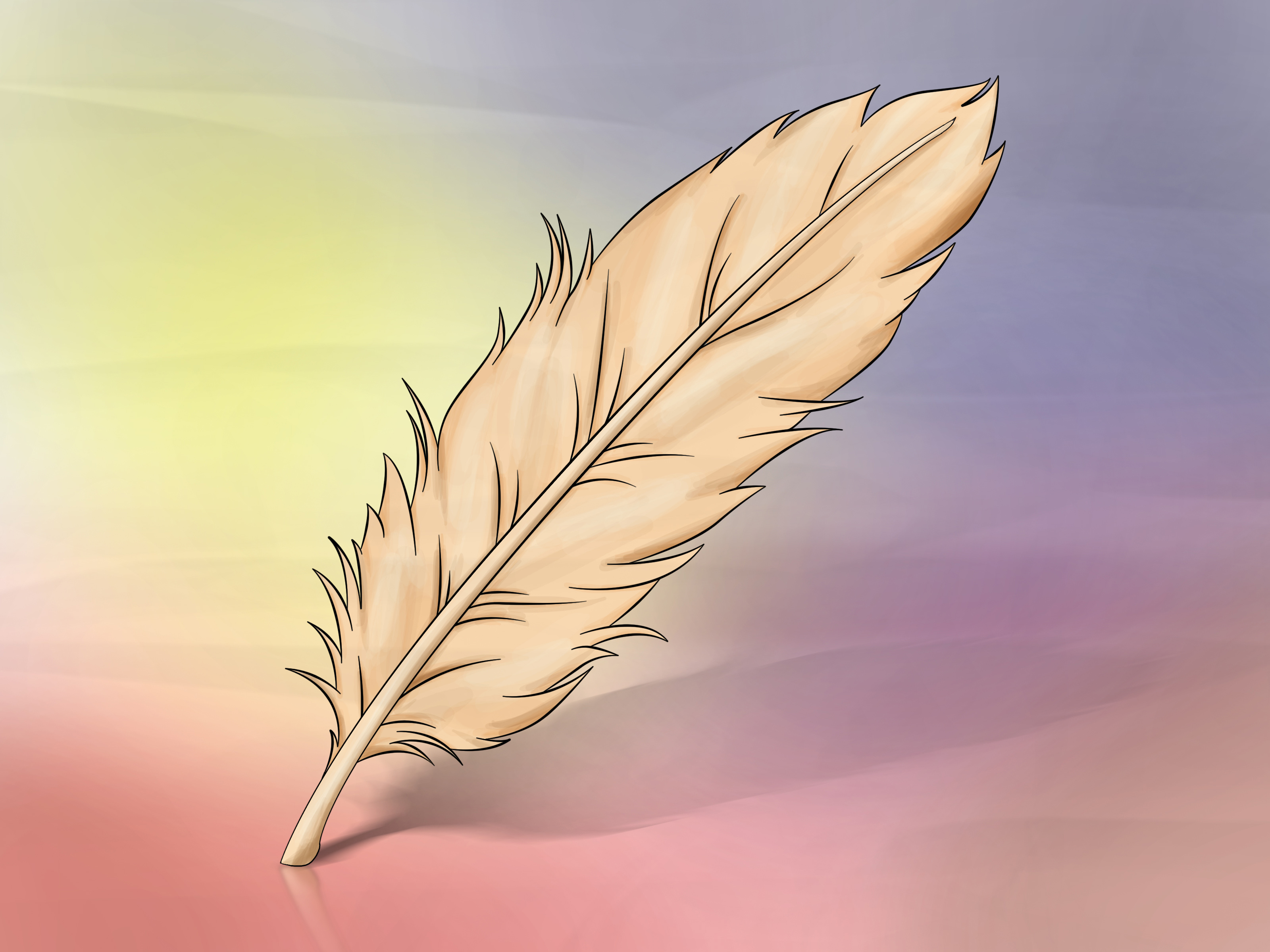 3200x2400 How To Draw A Feather 8 Steps (With Pictures)