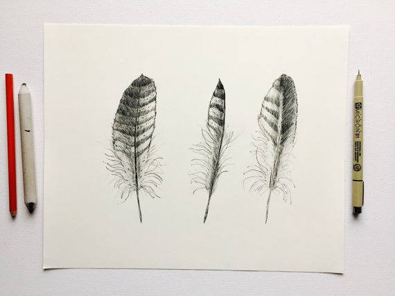 570x428 Turkey Feather Art Original Detailed Ink And Charcoal Drawing