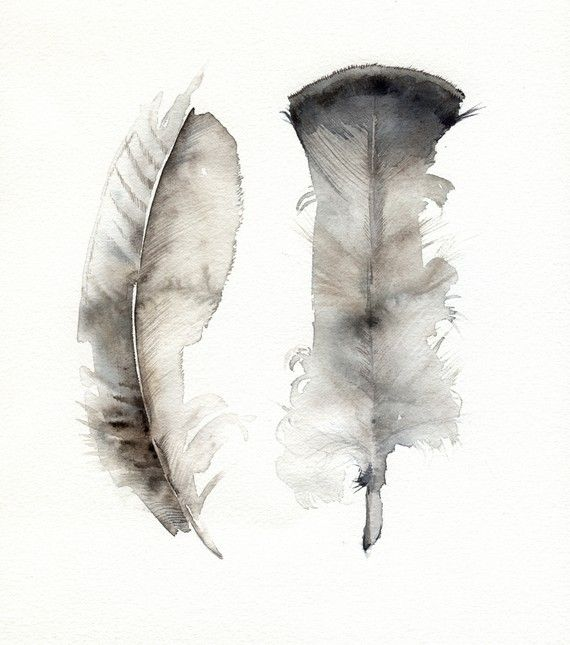 570x645 Turkey Feathers Original Watercolor Painting Watercolor