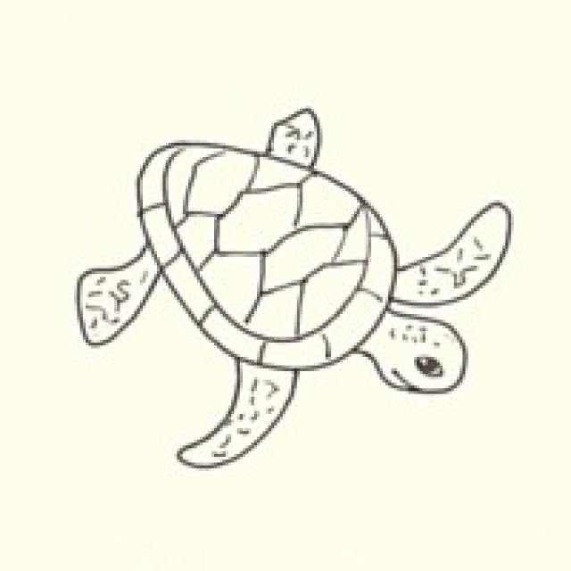 640x640 Draw A Sea Turtle In 3 Easy Steps Turtle, Painting Techniques