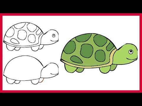 480x360 How To Draw A Turtle Easy Simple Step By Step For Kids