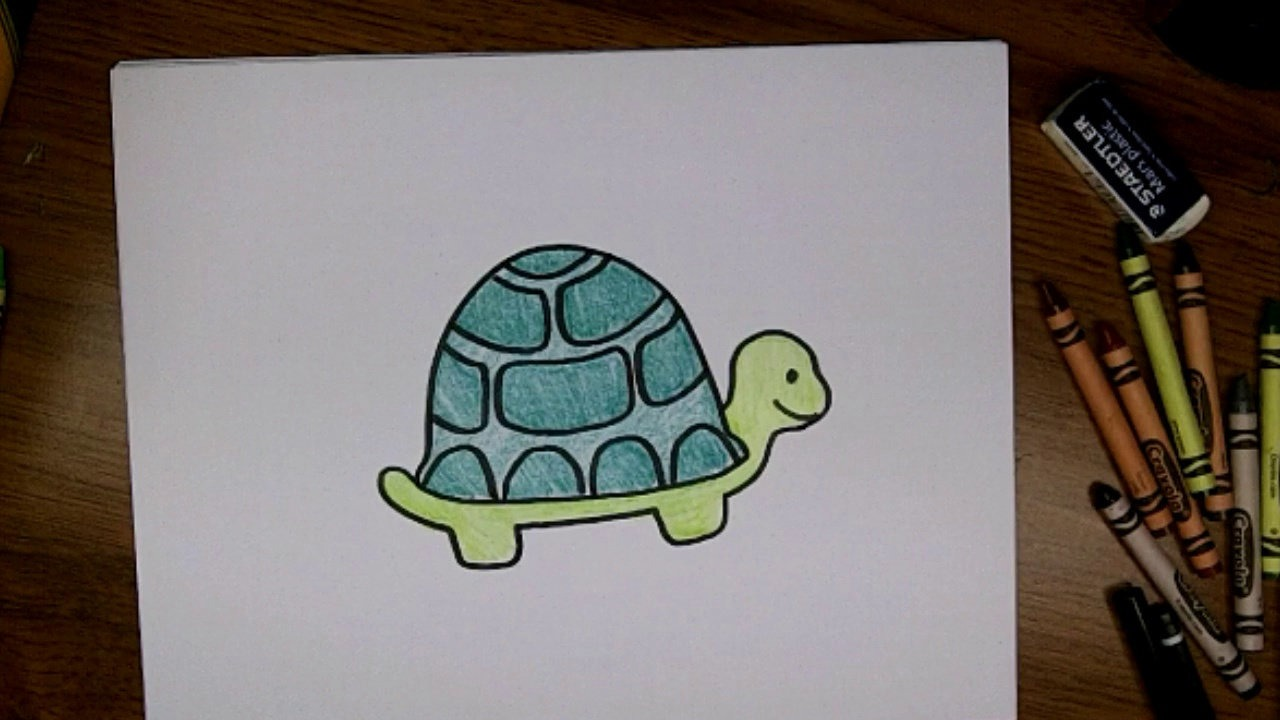 Turtle Easy Drawing At Getdrawings Com Free For Personal Use