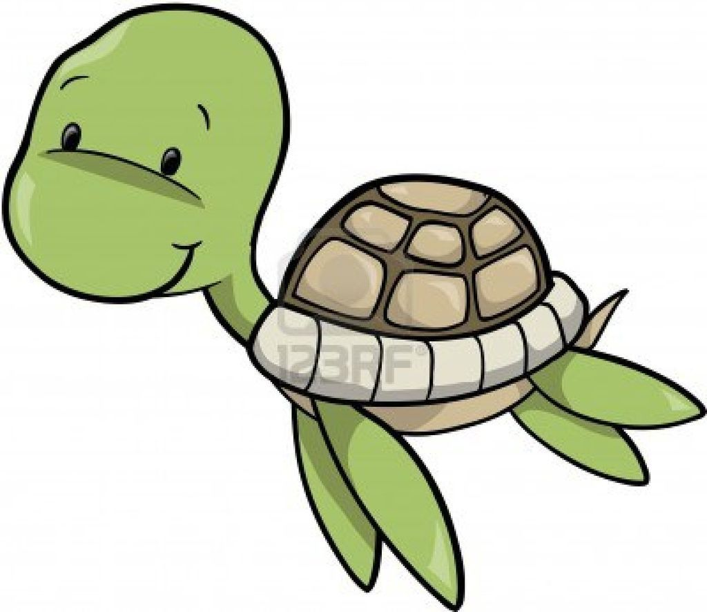 1024x886 Turtle Drawing