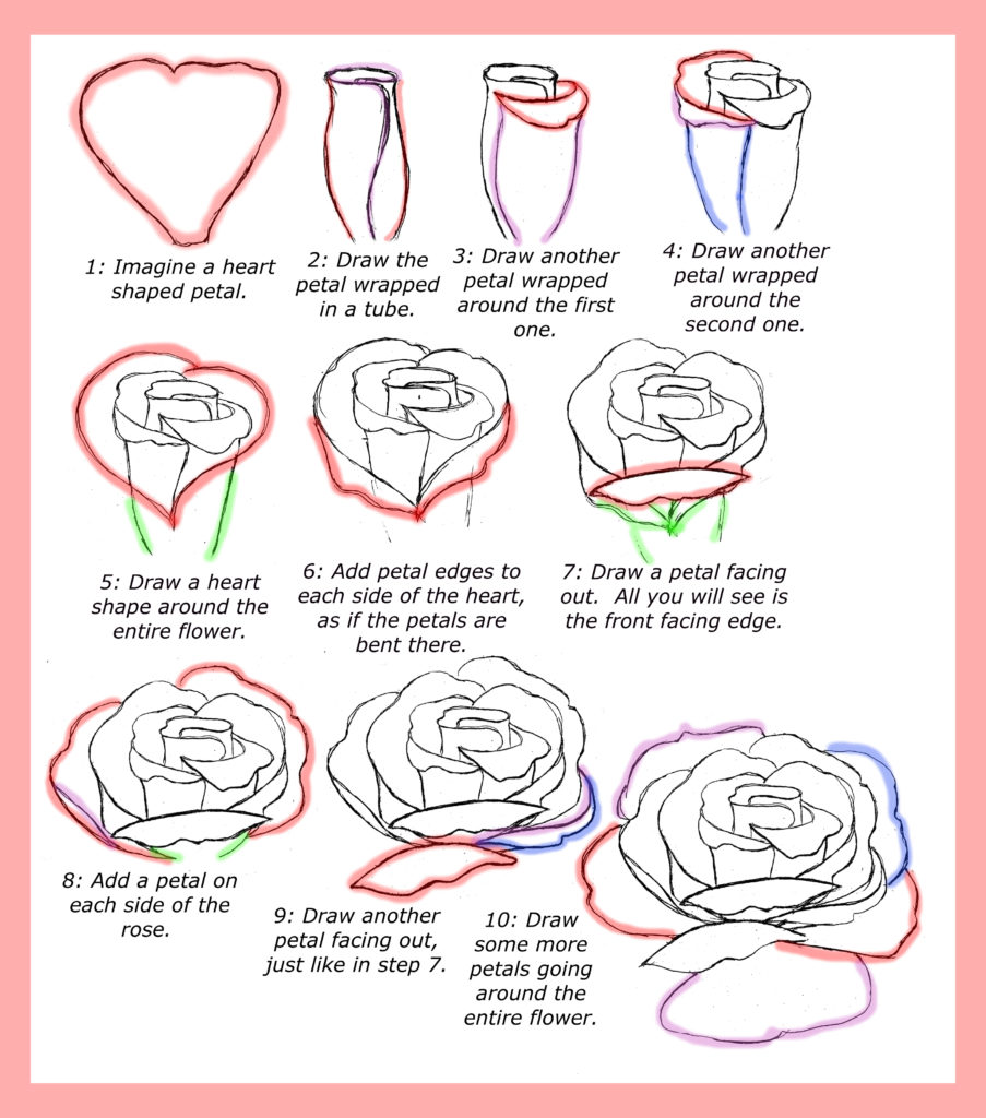 903x1024 How To Draw Roses