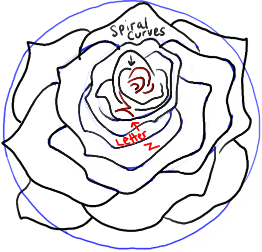 525x505 how to draw roses opening in full bloom step by step drawing