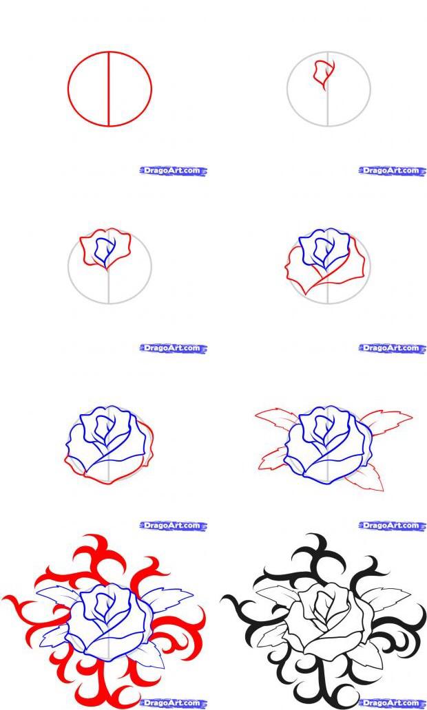 620x1032 Rose Tutorial Art Tutorialsreferences Rose