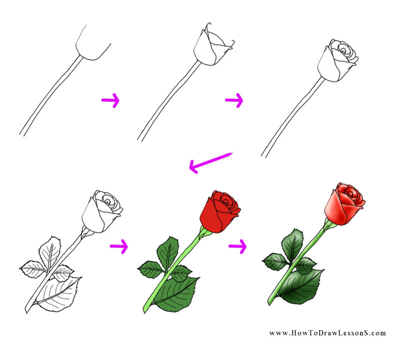 800x700 How To Draw A Flower Tutorial Easy Hand Draw Flowers Easy On Any