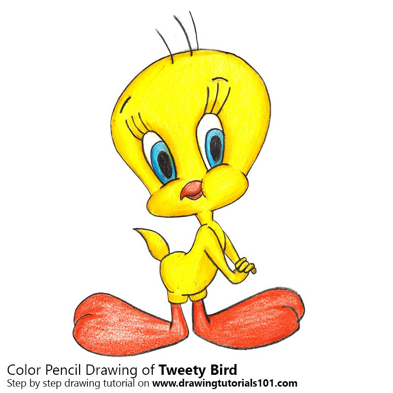 tweety bird drawing at getdrawings com free for personal use rh getdrawings com tweety bird clip art free tweety bird christmas clipart