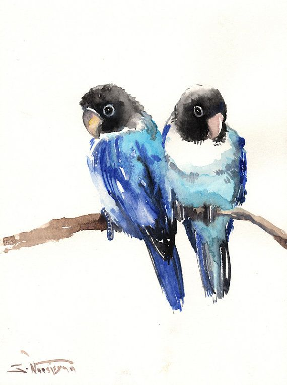 570x765 84 best bird drawings images on pinterest sketchbooks animal
