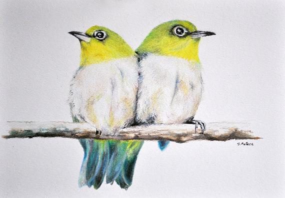 570x397 two birds
