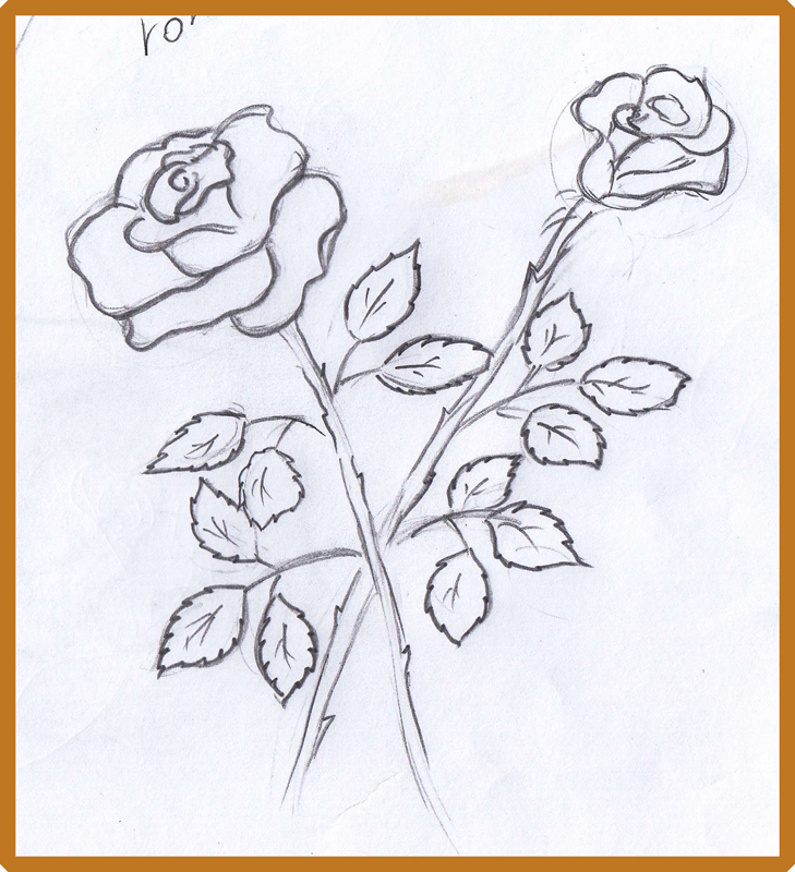 729x800 Weekly Doodles And Tuts How To Draw A Rose Additional Links