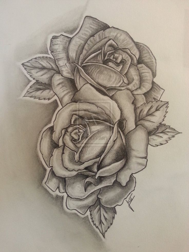 736x981 Rose Tattoo