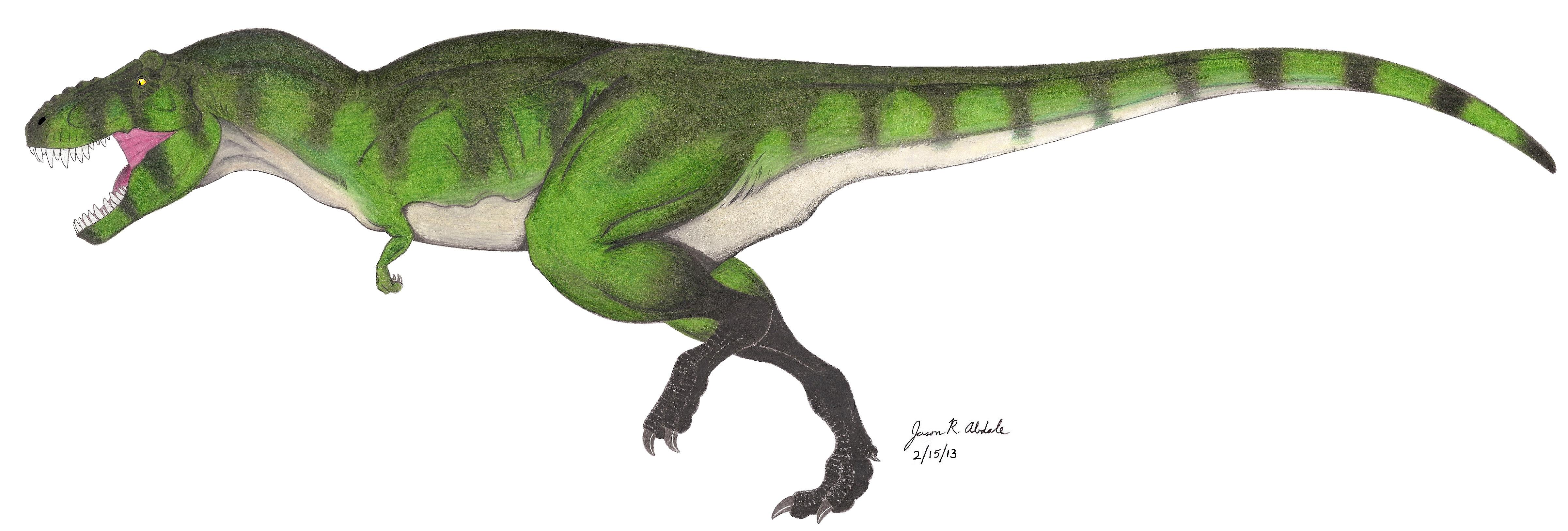 Tyrannosaurus Drawing at GetDrawings.com | Free for personal use ...