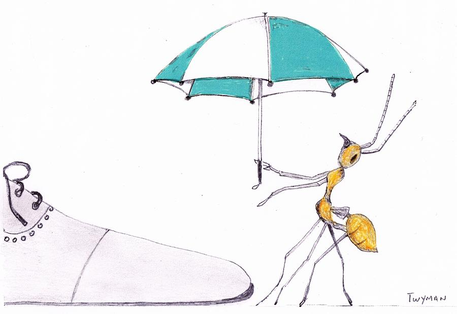 900x620 Ant With Umbrella Drawing By Dan Twyman
