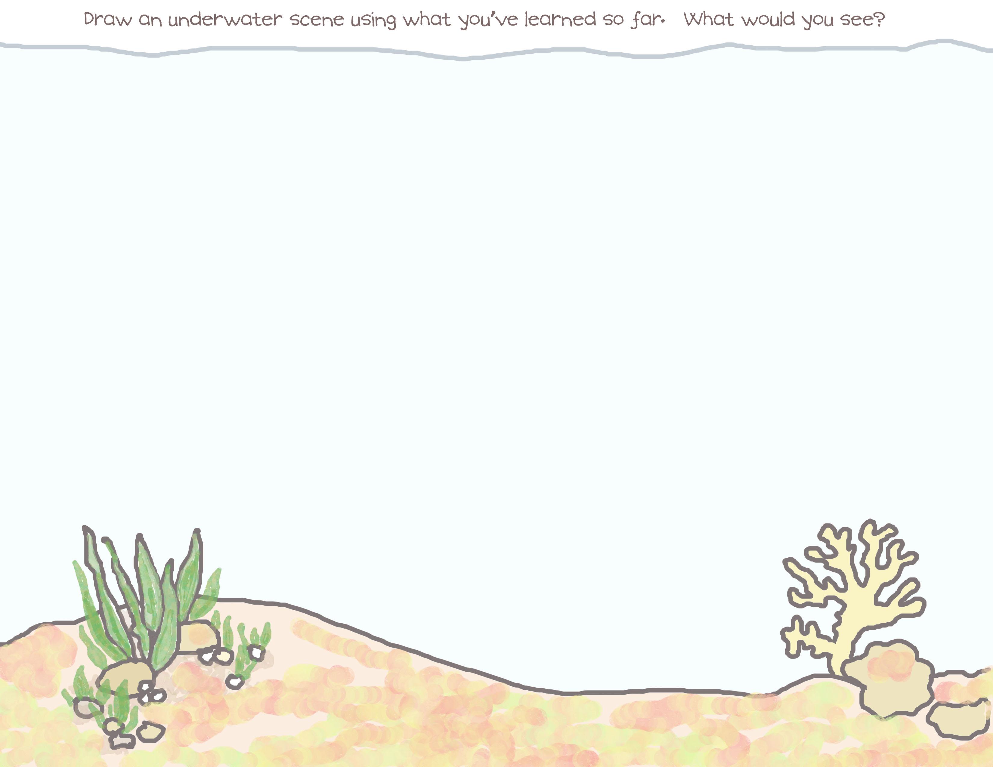 3300x2550 Underwater Scene Rainy Days Amp Sun Days