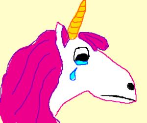 300x250 Sad Unicorn