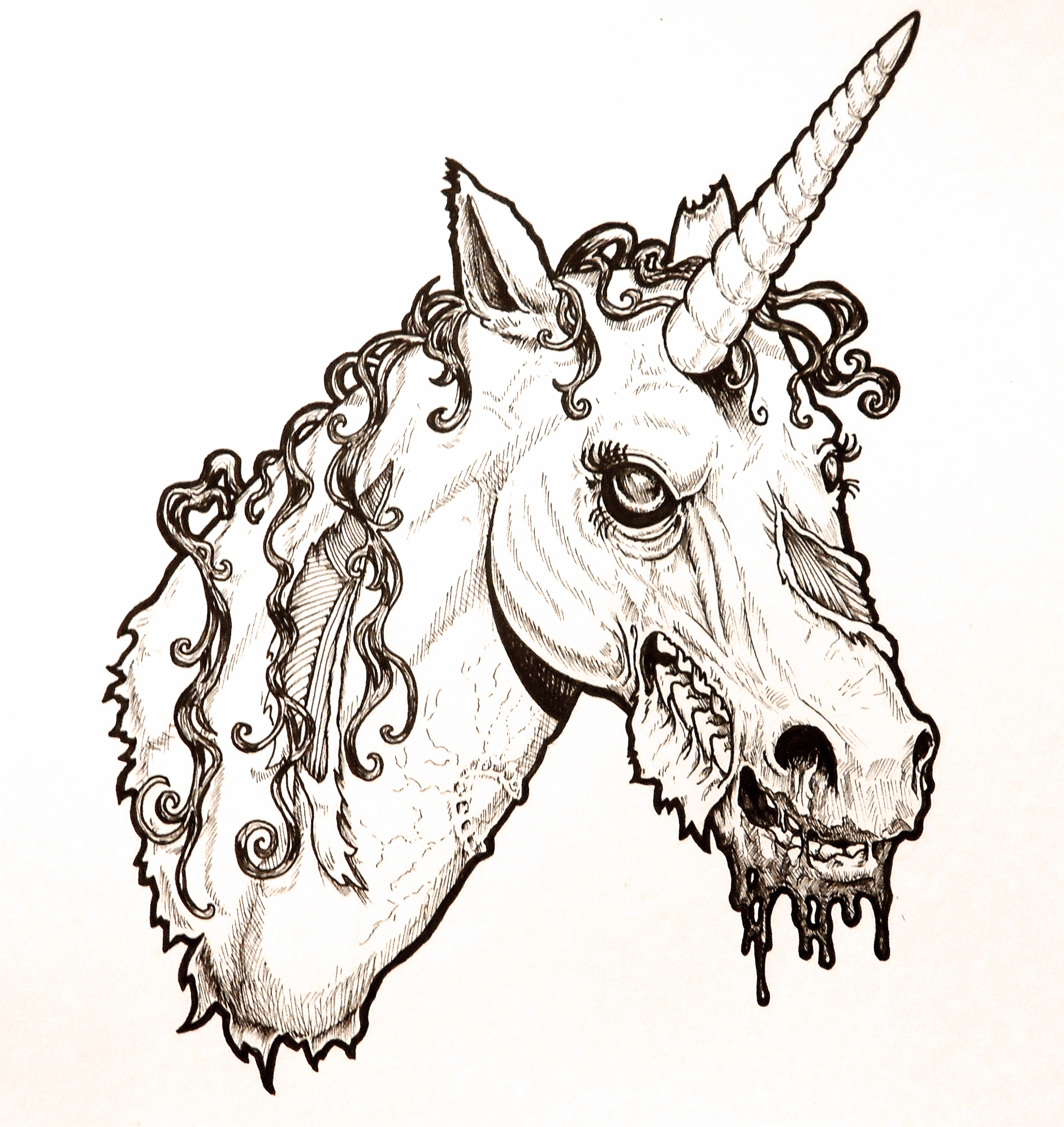 1882x1994 Unicorn Head Drawing Zombie Unicorn Headharperugby