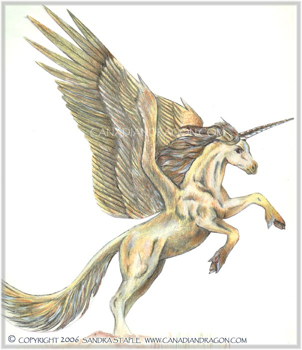 605x700 canadian dragon fantasy art original unicorn character