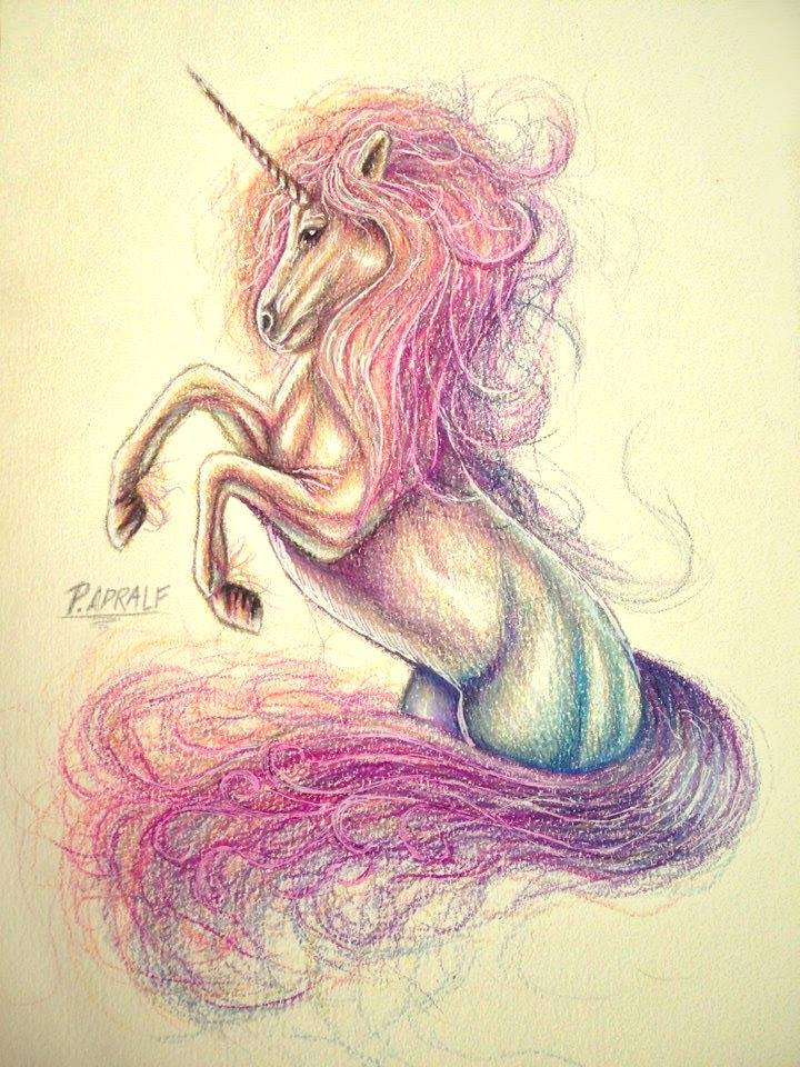 Pencil Step By Step Drawing Unicorn With Color