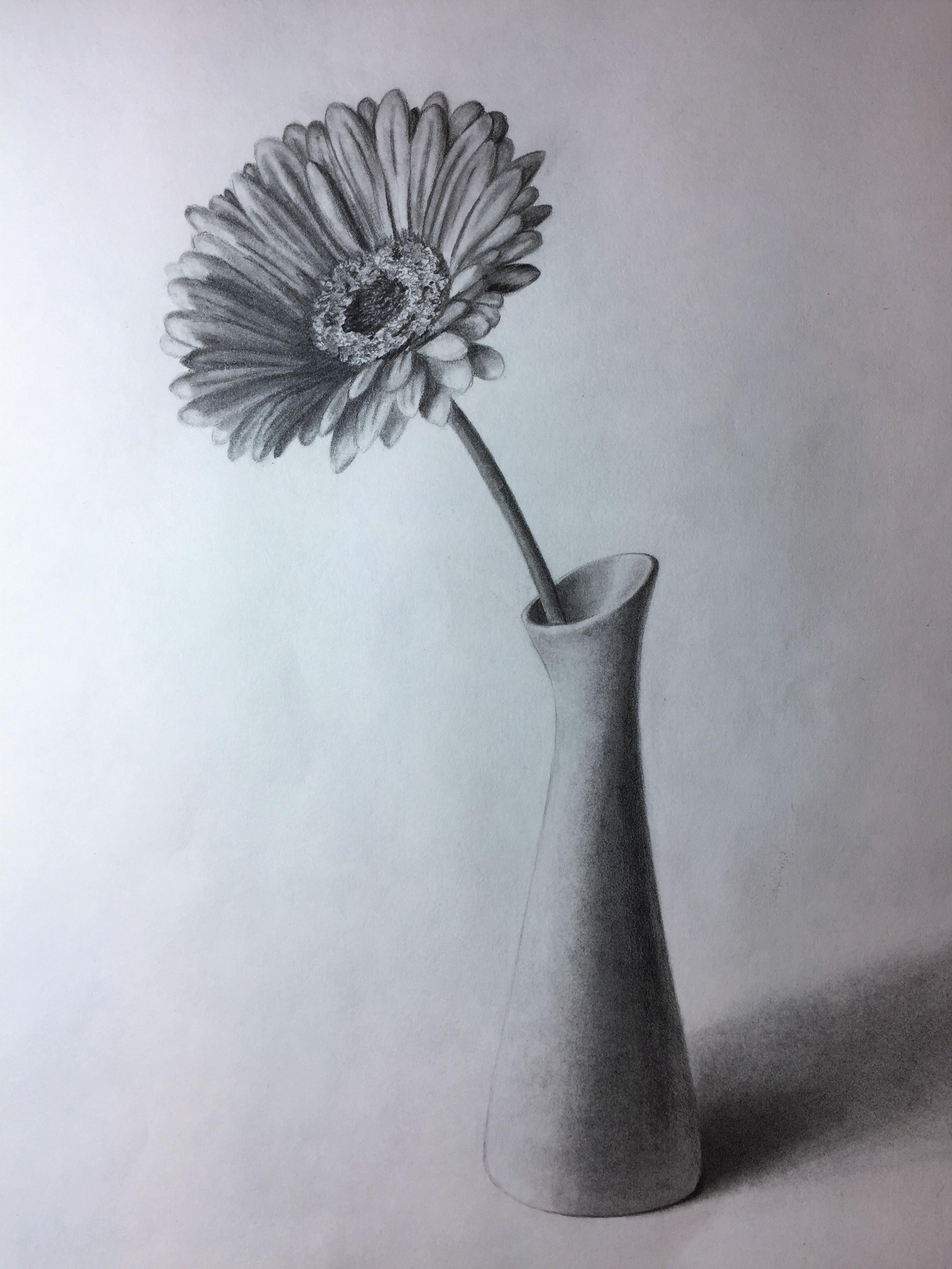 Vase Pencil Drawing At Getdrawings