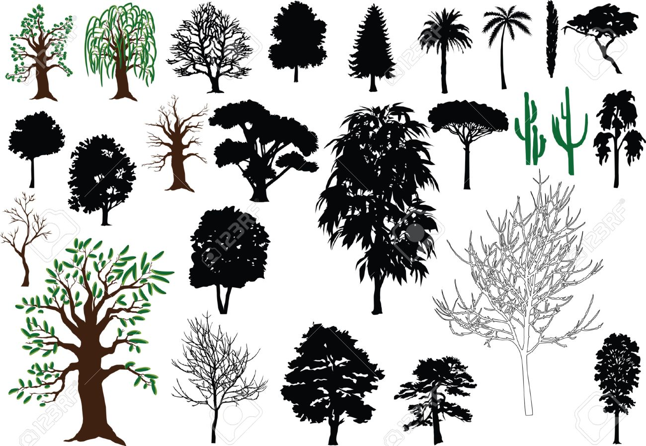 1300x897 Set Of Vector Trees (Silhouettes, Drawing) Royalty Free Cliparts