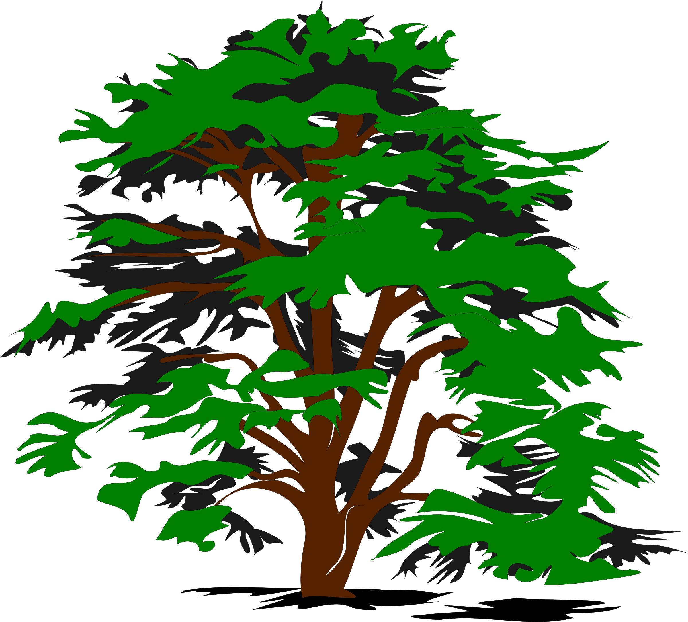 Vector Tree Drawing at GetDrawings.com | Free for personal use ...