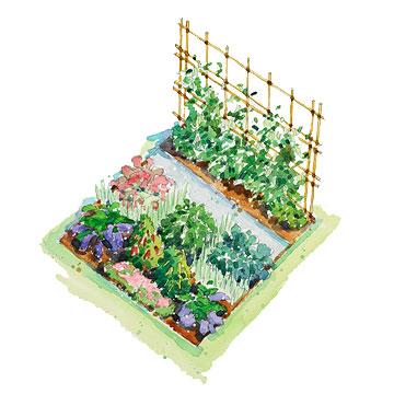 360x360 Vegetable Garden Design Drawing AEUR