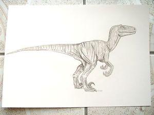 300x225 A4 Charcoal Sketch Drawing Dinosaur Velociraptor Ebay