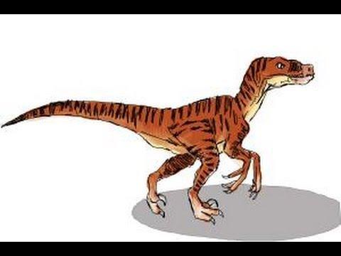 480x360 How To Draw A Velociraptor