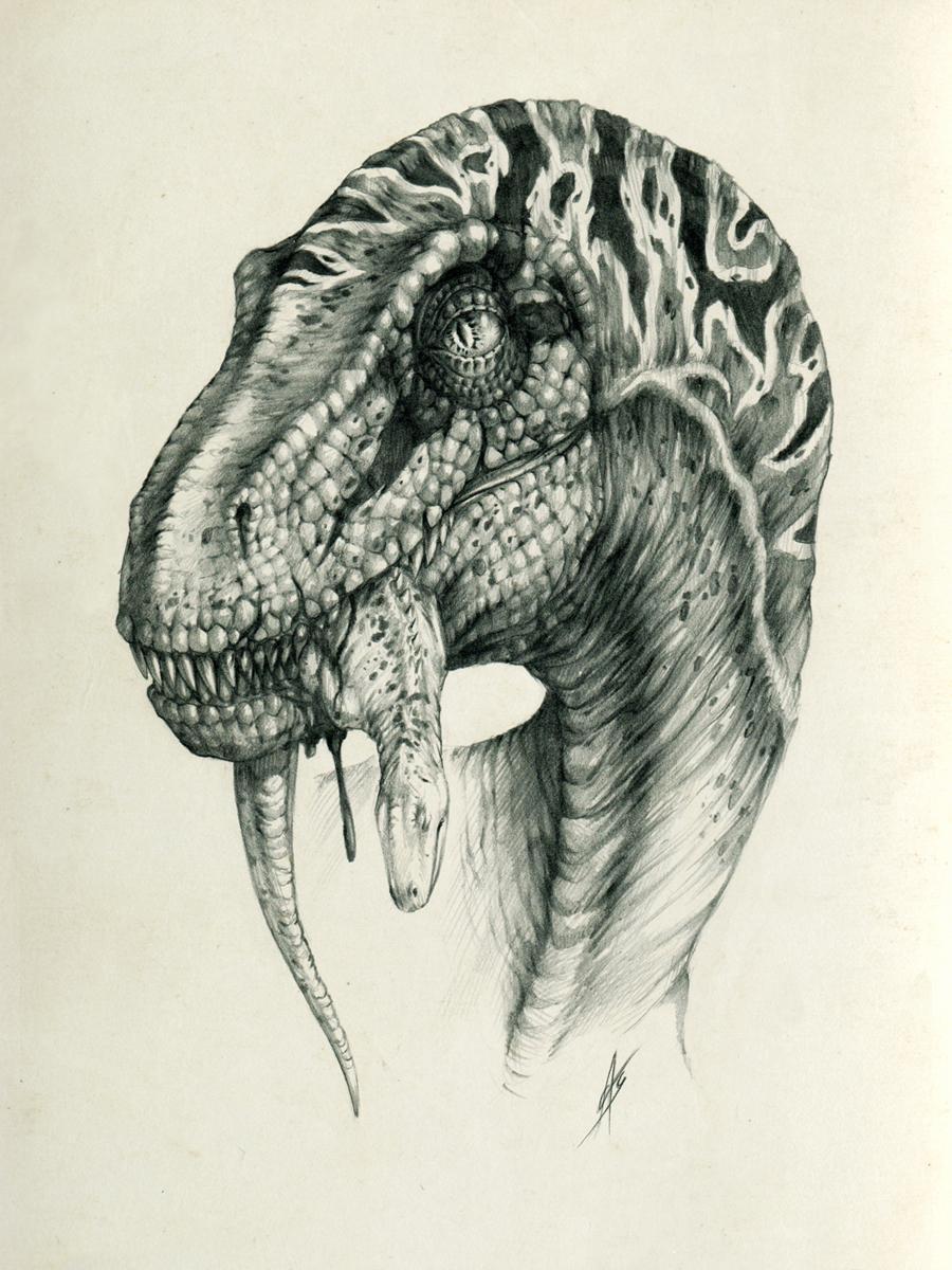 900x1200 Velociraptor By On @