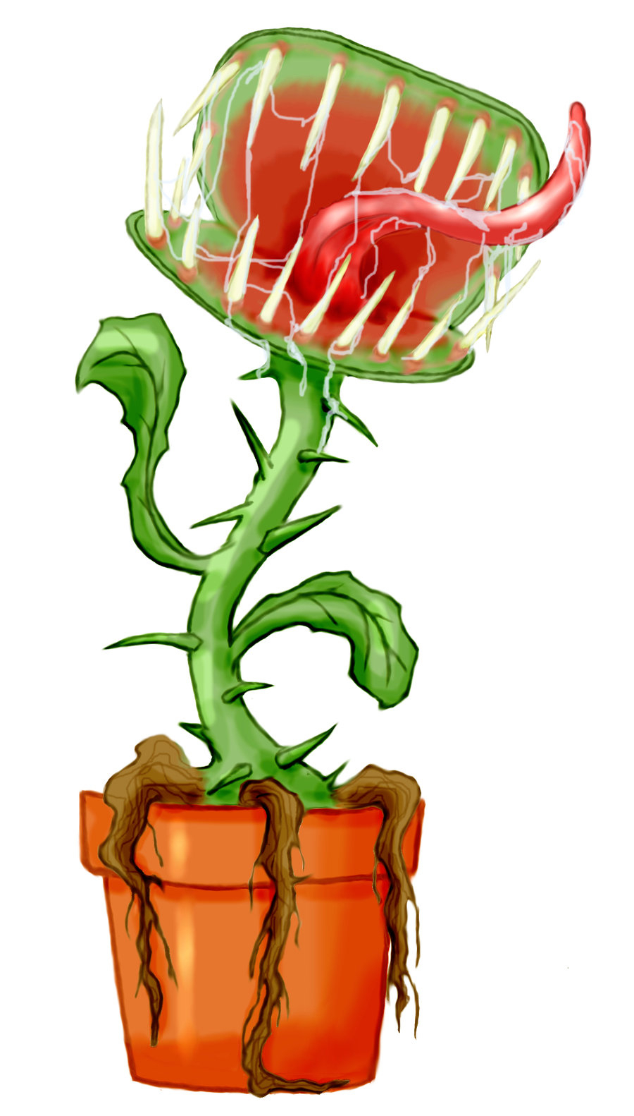 900x1582 Drawing Of Venus Fly Trap