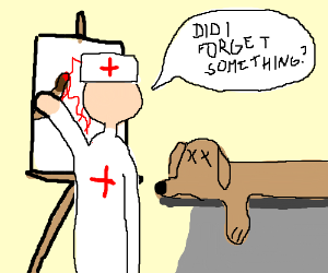 300x250 Veterinarian Drawing Instead Of Working