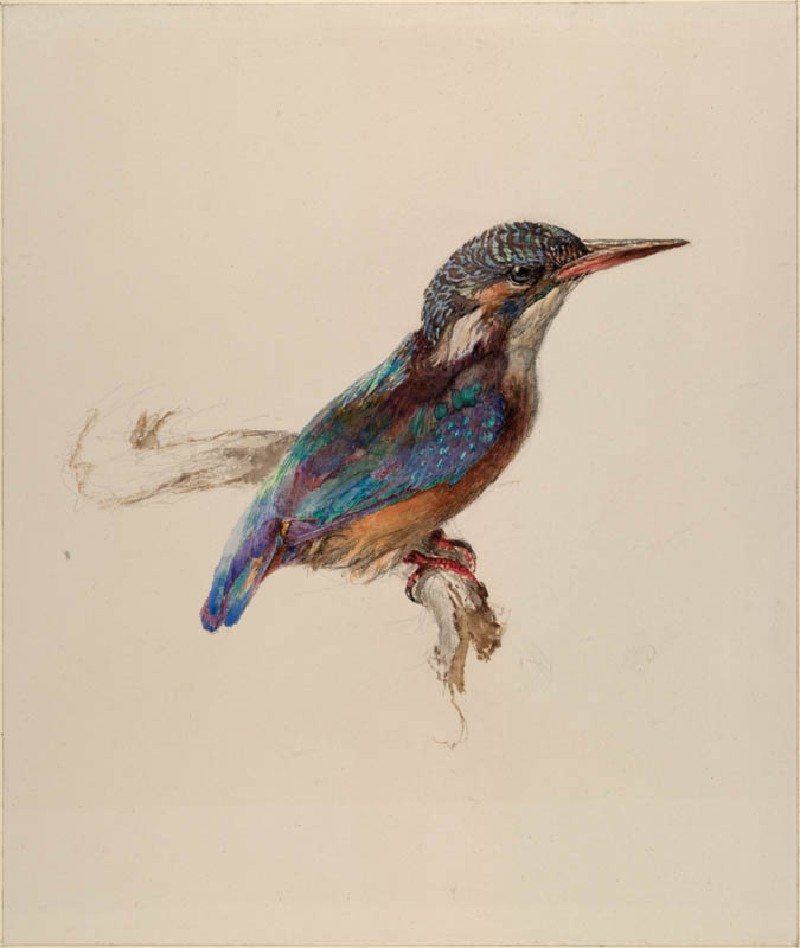 800x948 Ashmolean The Elements Of Drawing, John Ruskin's Teaching