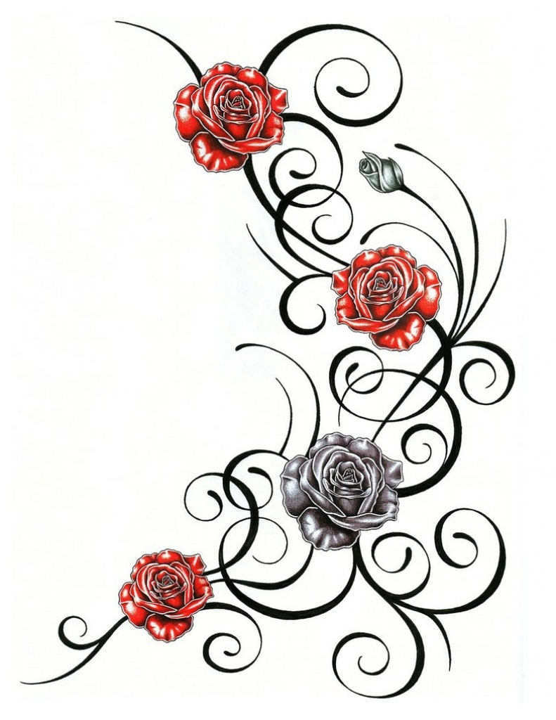 791x1024 Roses On A Vine Tattoo Designs Tattoo Ideas With Roses Rose Vine