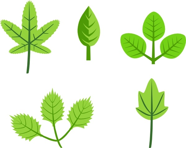 600x478 Leaves Tree Vines Branches Clip Art Free Vector In Open Office