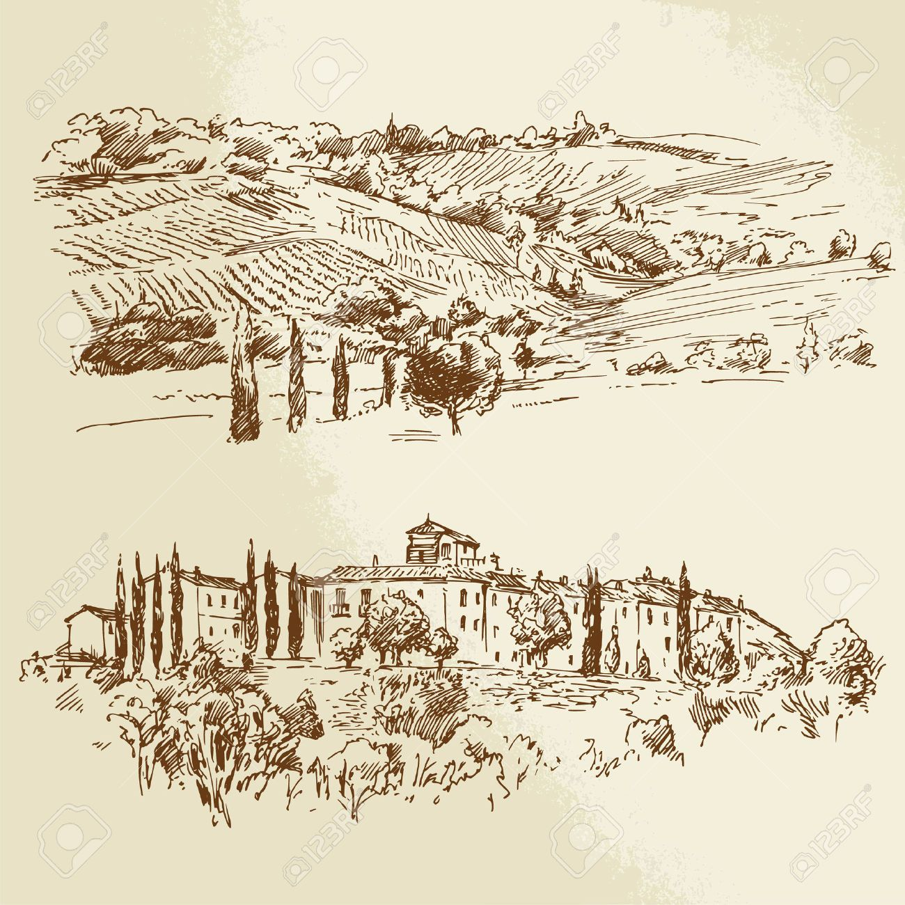 1300x1300 25307611 Vineyard Romantic Landscape Hand Drawn Illustration Stock