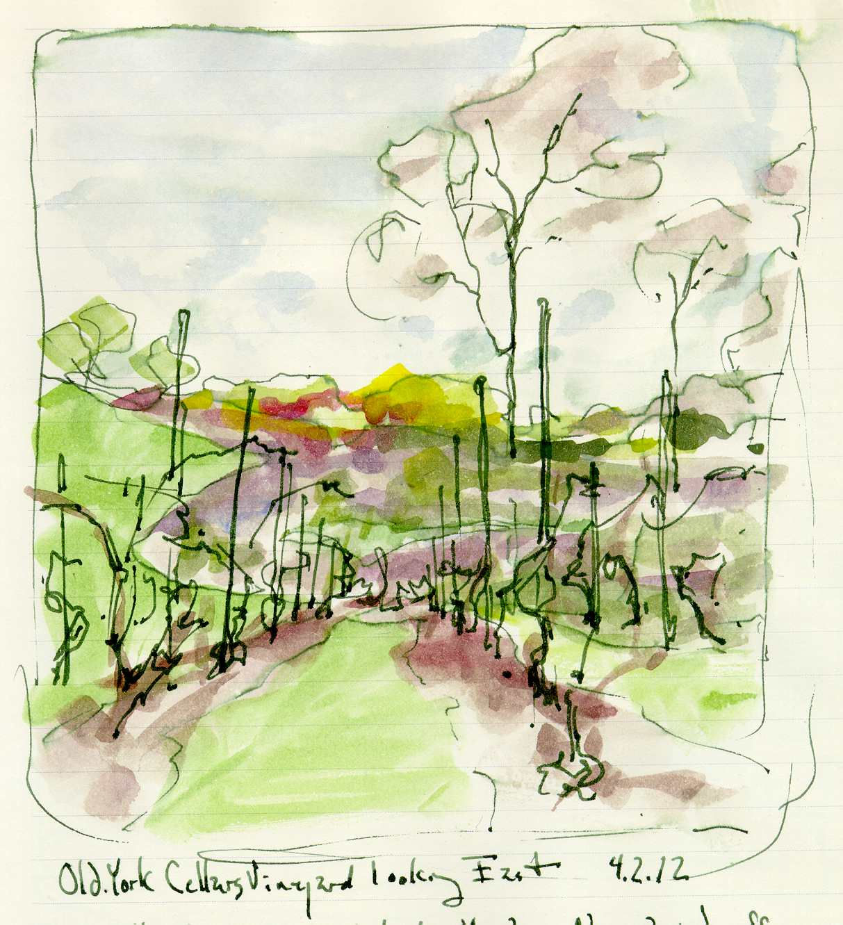 1213x1331 Old York Cellars Vineyard Ink Wtarcolor Sketchbook Drawing Chris