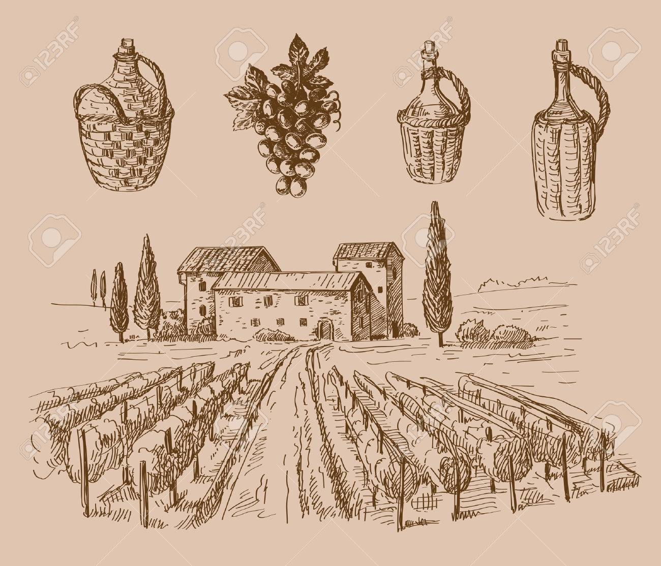1300x1114 Vector Hand Drawn Wine Sketch And Vineyard Doodle Royalty Free