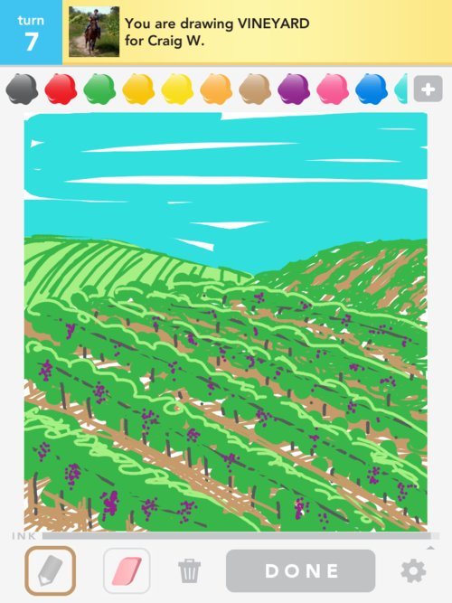 500x667 Vineyard Drawings