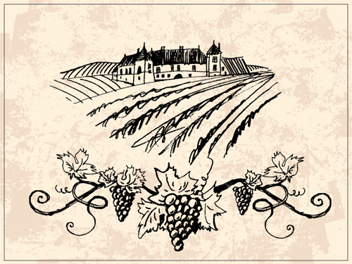 500x375 Vineyard Vector Free Vector Download (30 Free Vector)