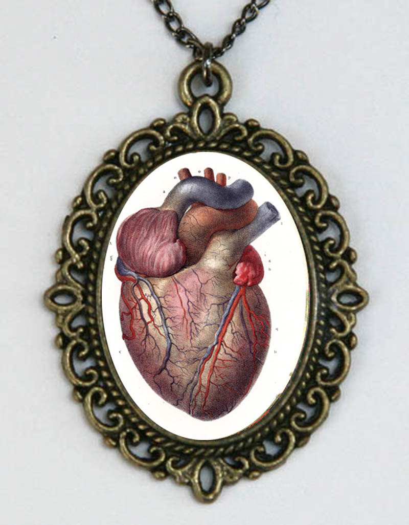 800x1026 Anatomical Heart Vintage Victorian Medical Drawing Necklace