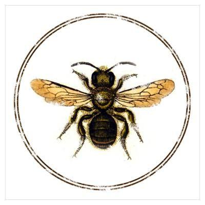 400x400 Vintage Bee Poster Logo Ideas Vintage Bee, Bee