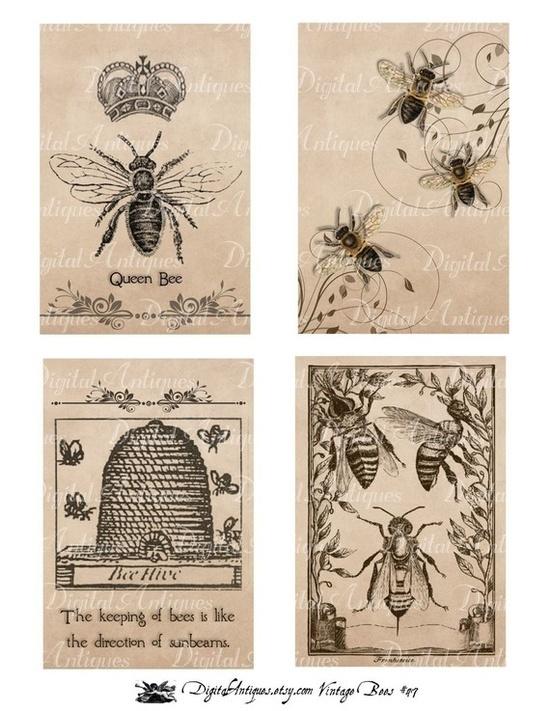 550x711 Vintage Bees Printables. Vintage Graphics Vintage