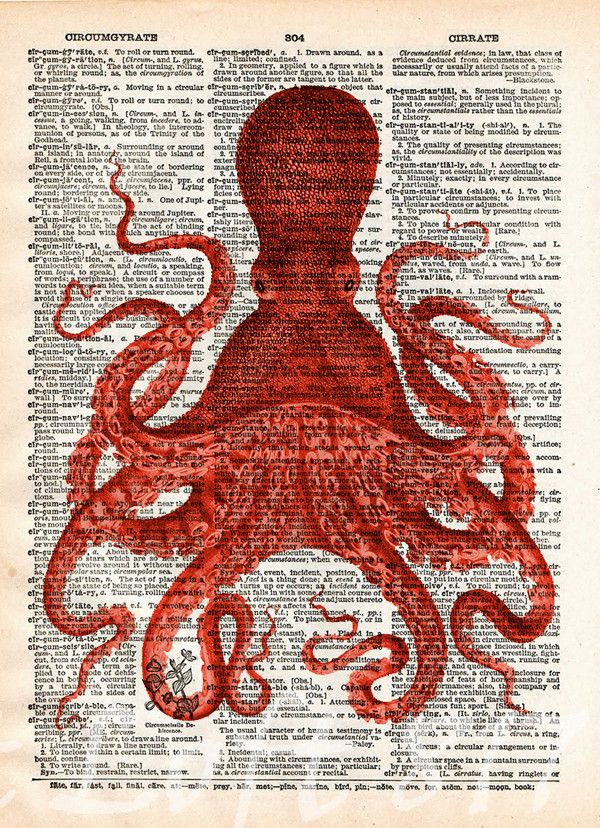 600x828 Octopus Wall Art, Vintage Octopus Drawing, Dictionary Print, Book