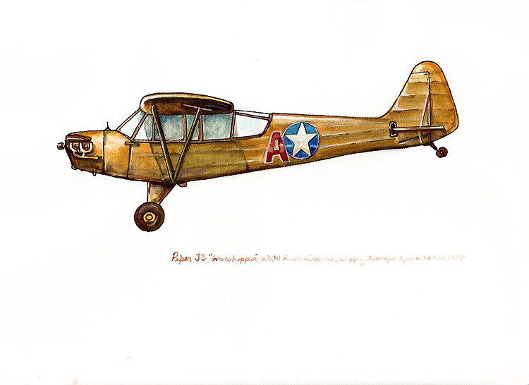 750x546 Piper J3 Grasshopper Vintage Airplane Watercolor Print 8x10