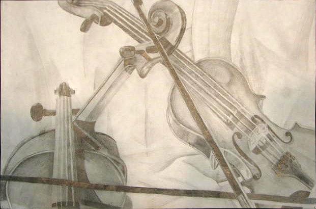 621x410 Viola Drawing By Cara Harwell