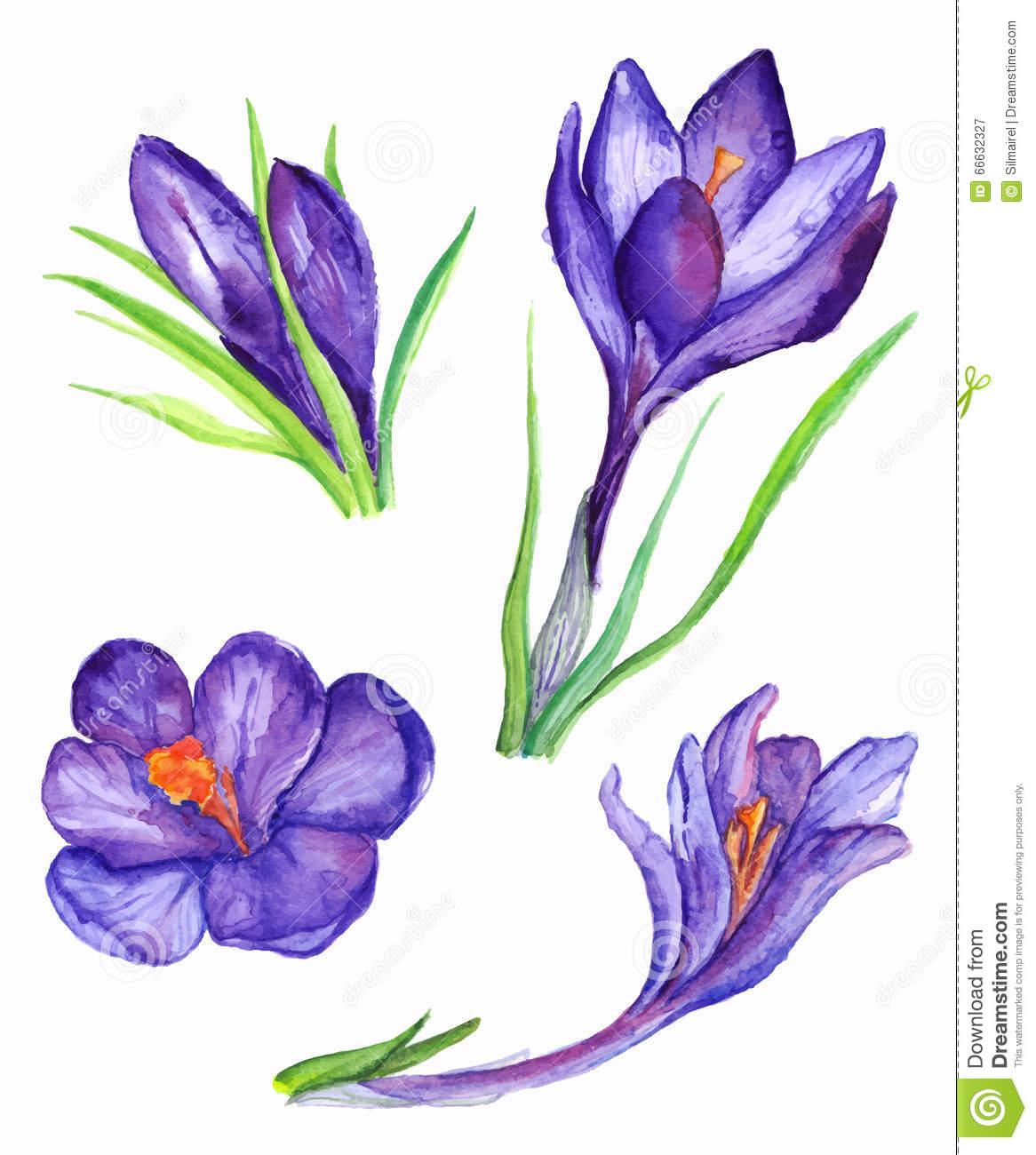 1166x1300 Purple Violet Flower Drawing Drawn Flower Purple Violet