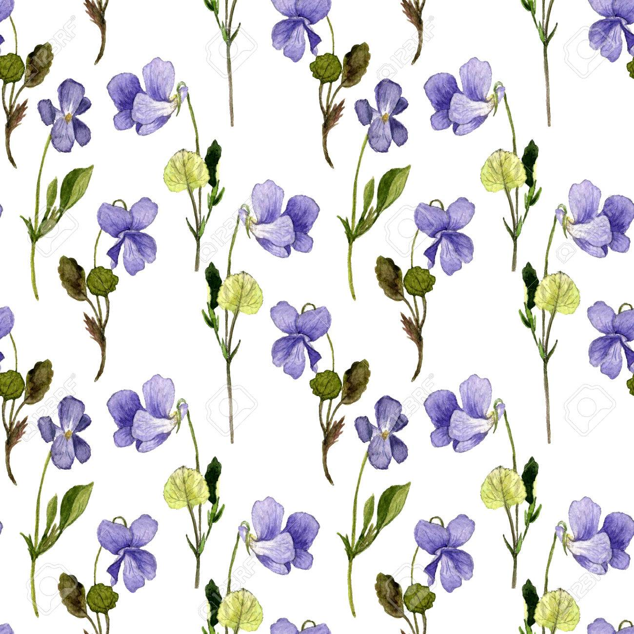 1300x1300 Floral Seamless Pattern With Watercolor Drawing Wild Flowers