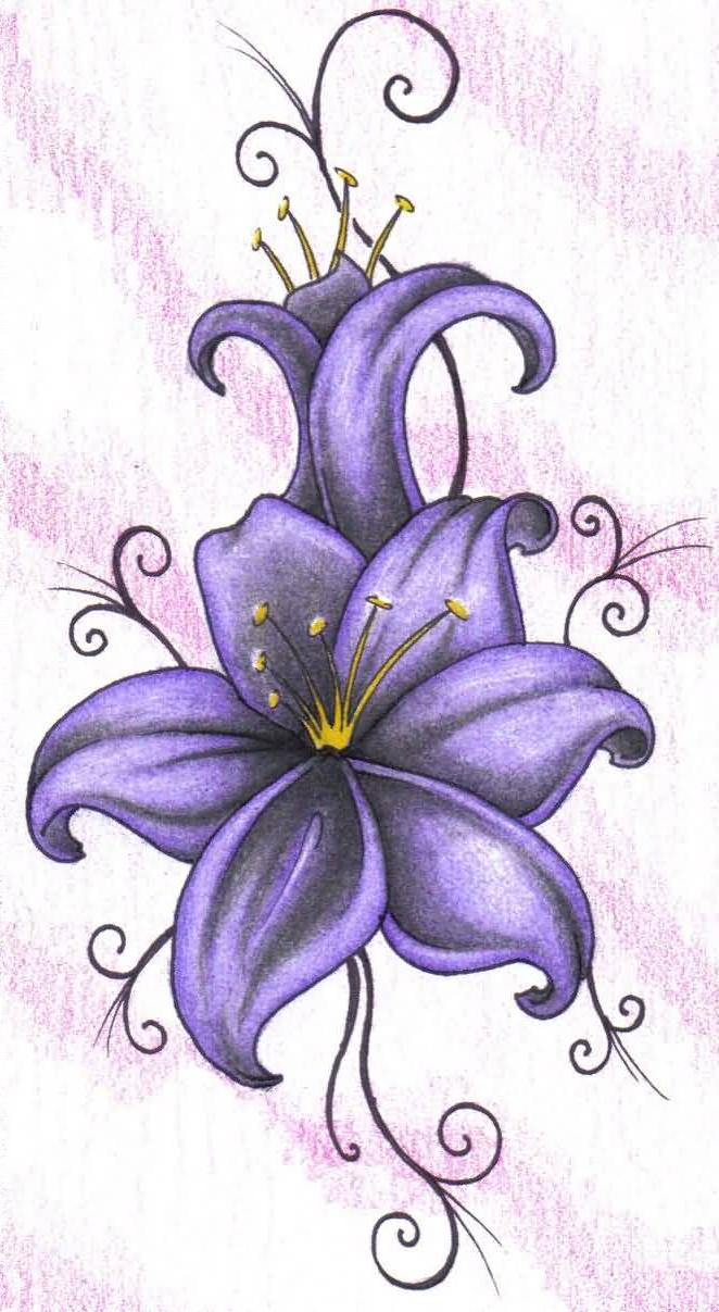 662x1207 Purple Violet Flower Drawing