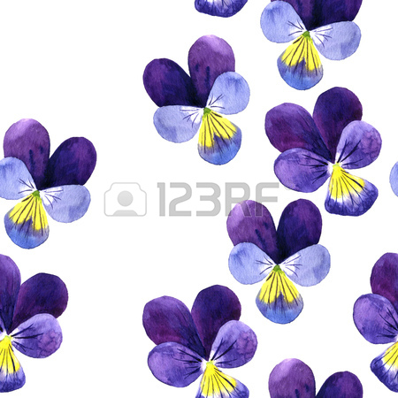 450x450 Seamless Pattern With Watercolor Drawing Wild Cornflowers